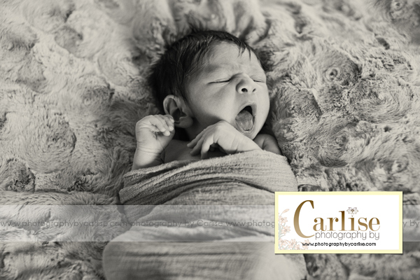 Hudson Valley NY Newborn Photographer