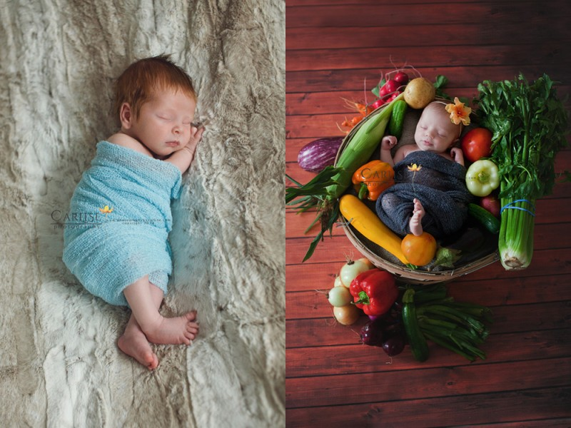Hudson Valley Newborn Photographer