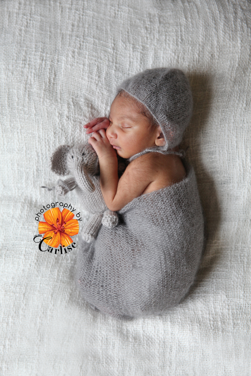 hudson valley ny newborn hospital photography