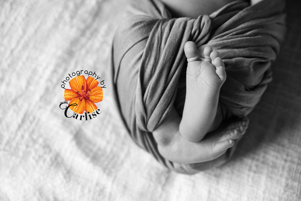 hudson valley ny hospital newborn photography